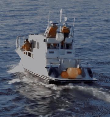 Видео: «Исследователь китов» от Volvo Penta